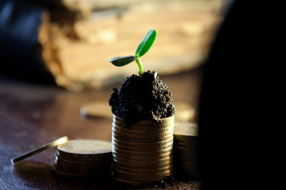 Где хранить деньги Варианты, условия, риски.